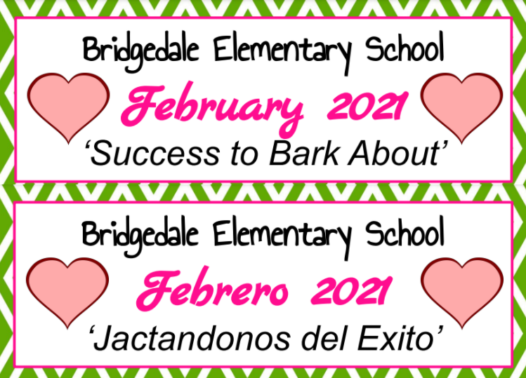 February Newsletter/Boletín de febrero