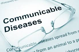 JP Communicable Diseases and Health Information