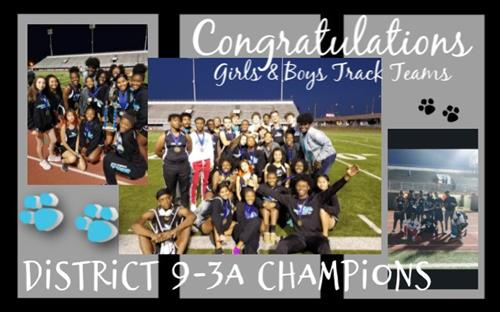 District Champs Graphic